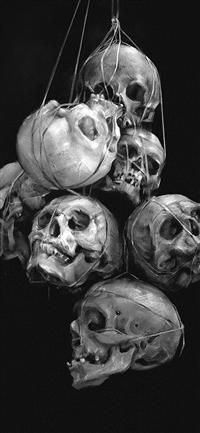 Paint skull dark yanjun cheng iPhone X wallpaper