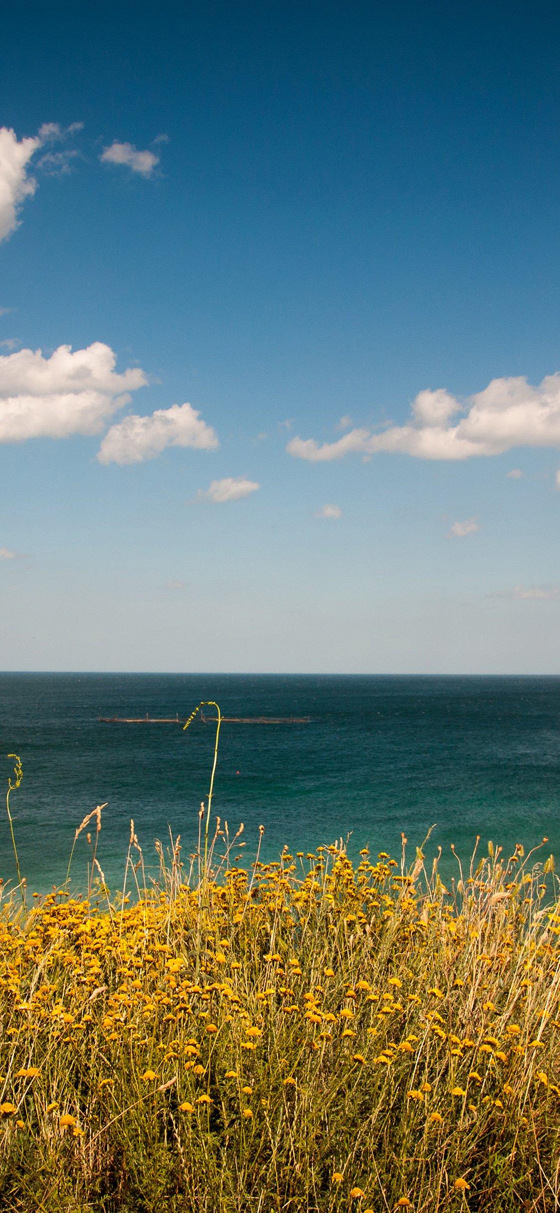 Sea cloud flower iPhone X wallpaper