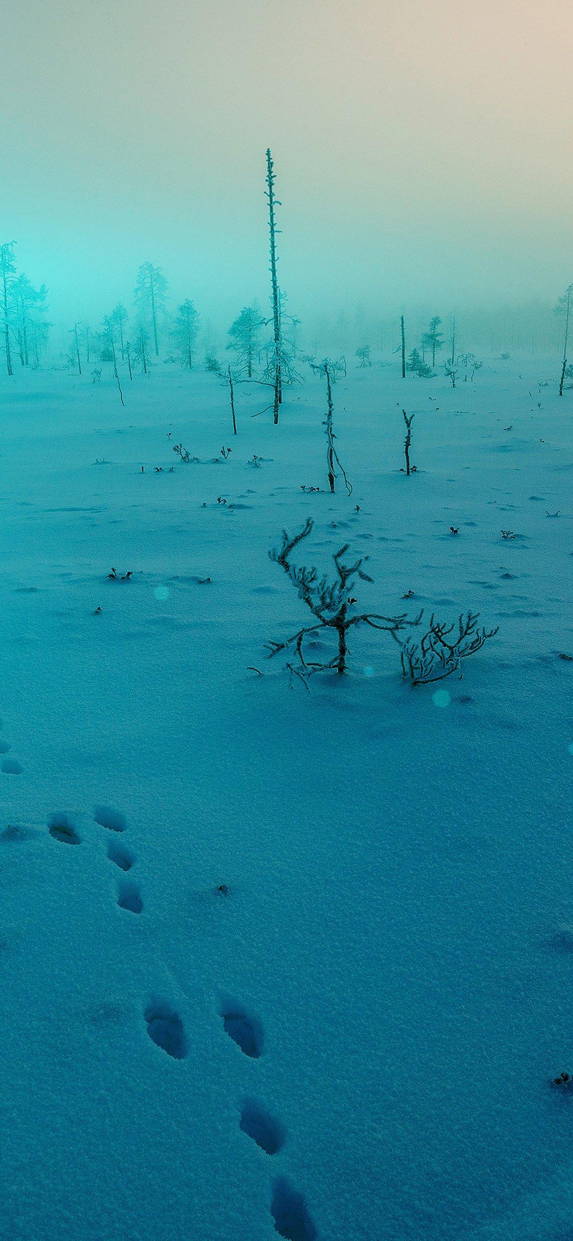 Snow walk winter blue footprints iPhone X wallpaper