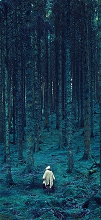 Wood forest blue mountain iPhone X wallpaper