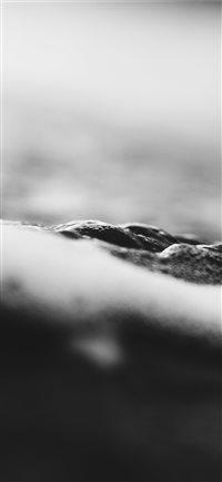 Black-Waters-of-Piha-2 iPhone X wallpaper