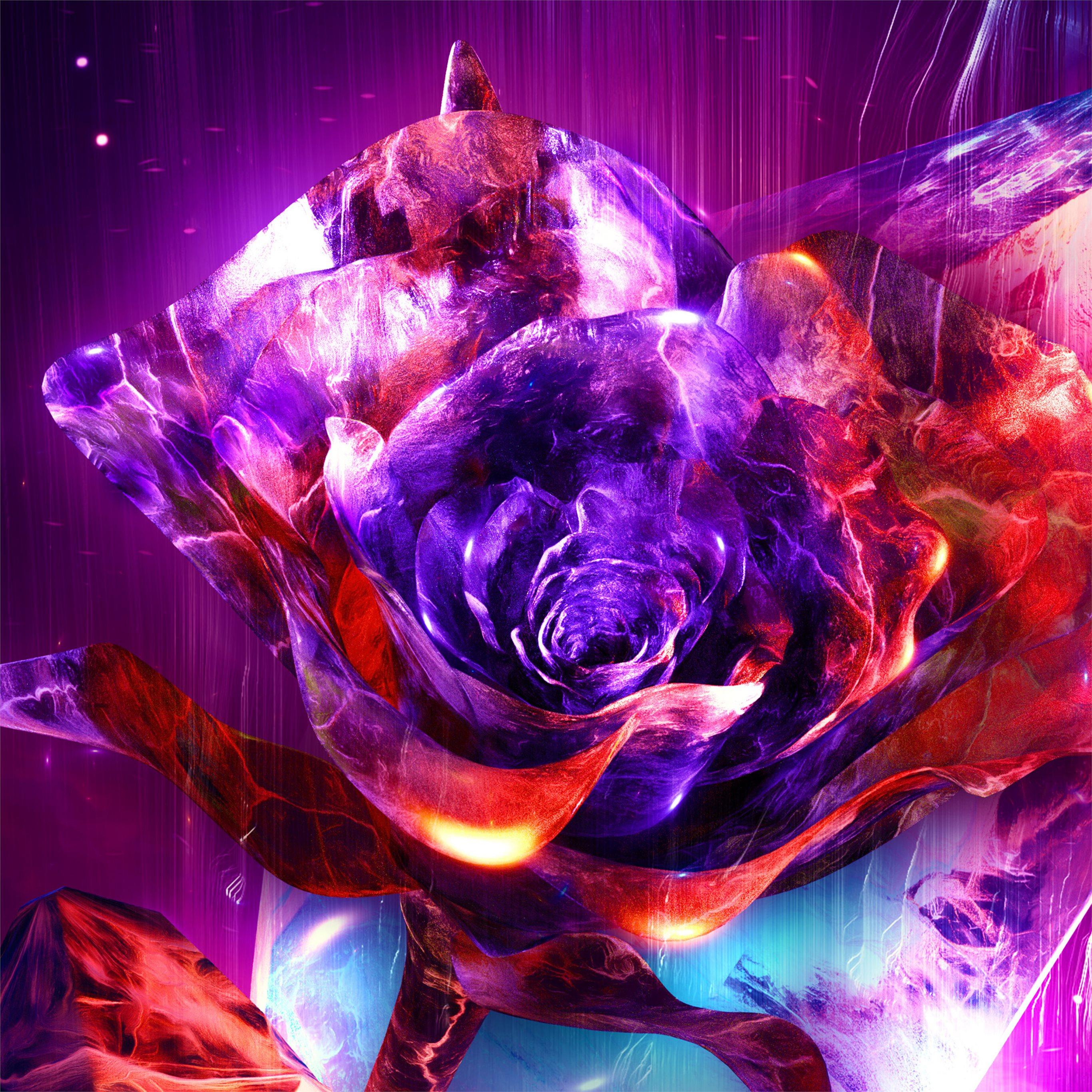 Rose Abstract 4k IPad Air Wallpapers Free Download