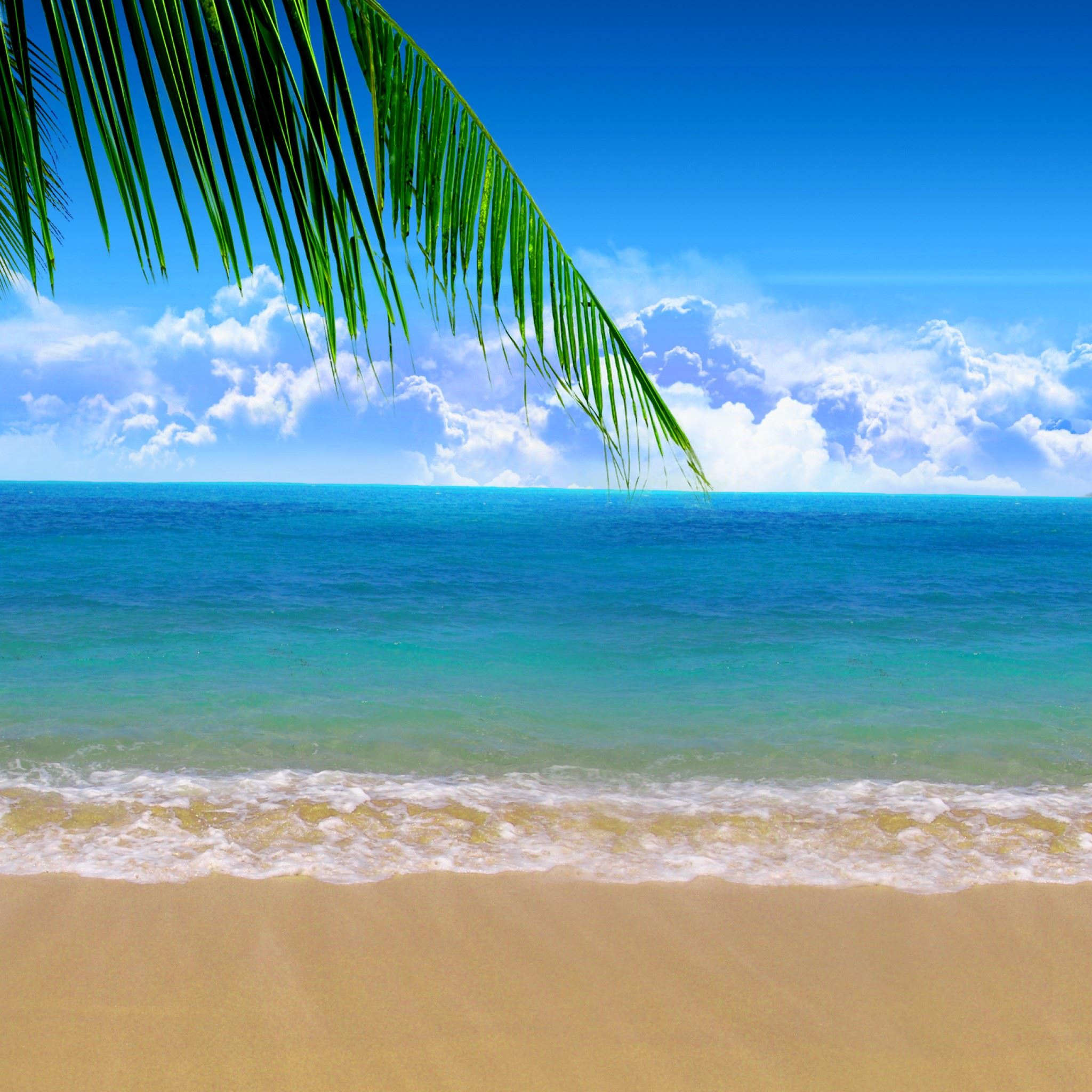 Summer Beach iPad Air wallpaper