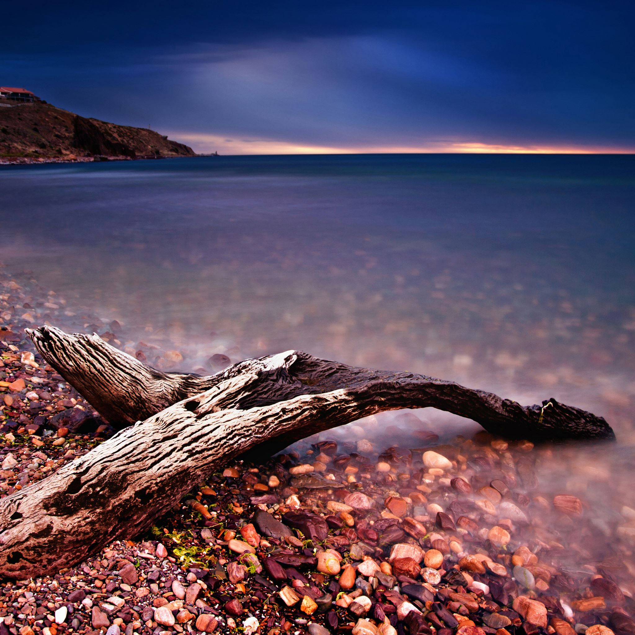 Driftwood iPad Air wallpaper