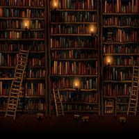 Bookshelves iPad Air wallpaper