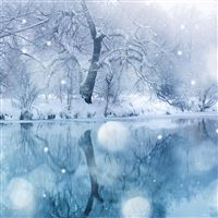 Winter Snowfall iPad Air wallpaper