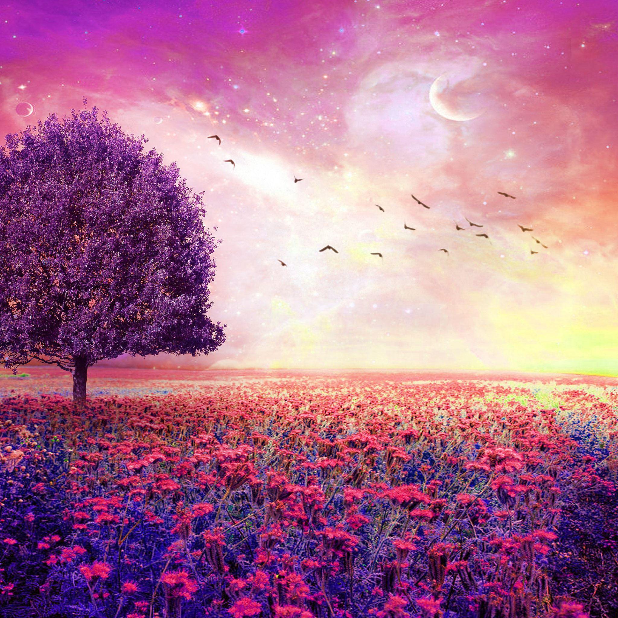 Flower Iphone Wallpaper: Fairy Dreamy Nature Flower Garden IPad Air Wallpaper