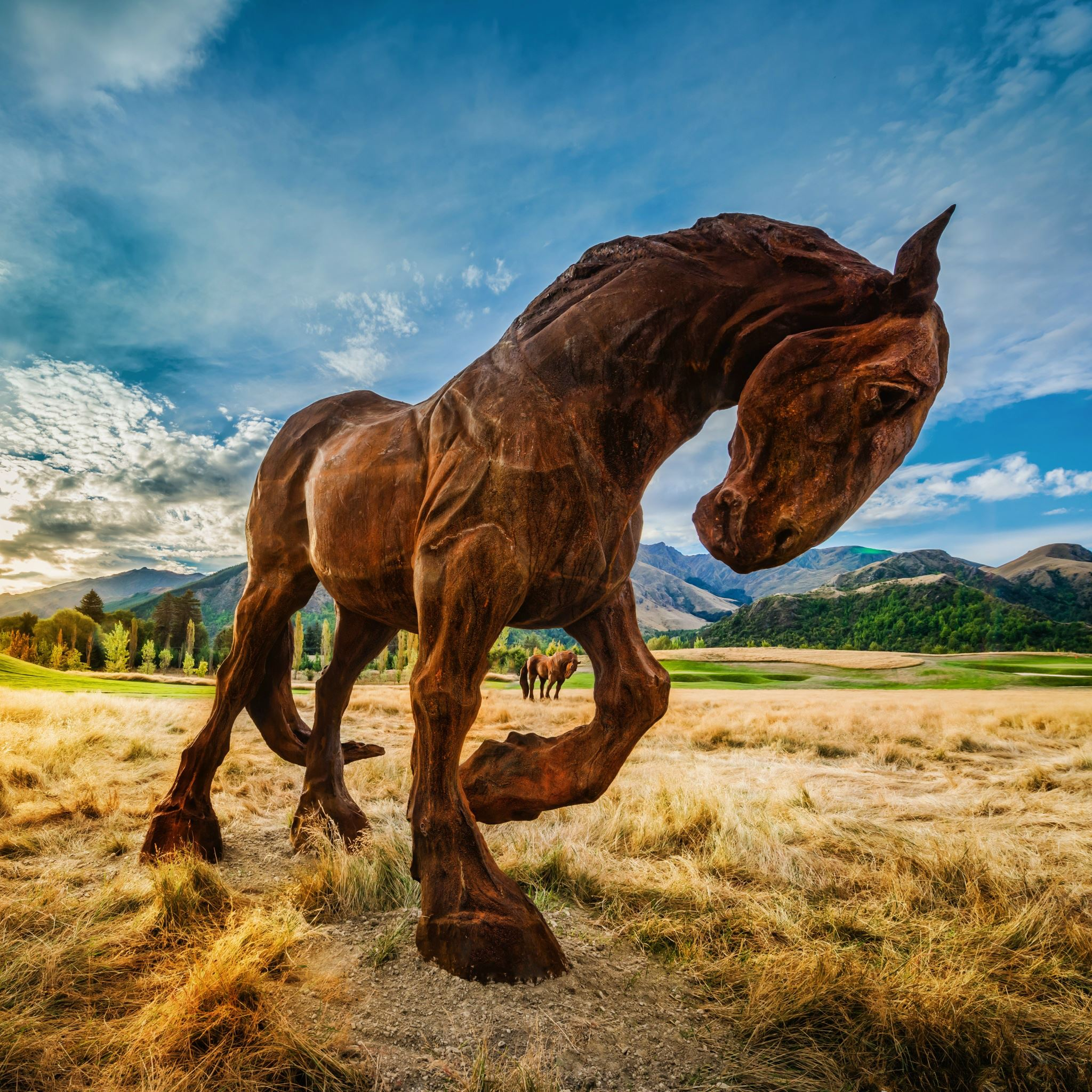 Wild Horse In Grassland IPad Air Wallpaper