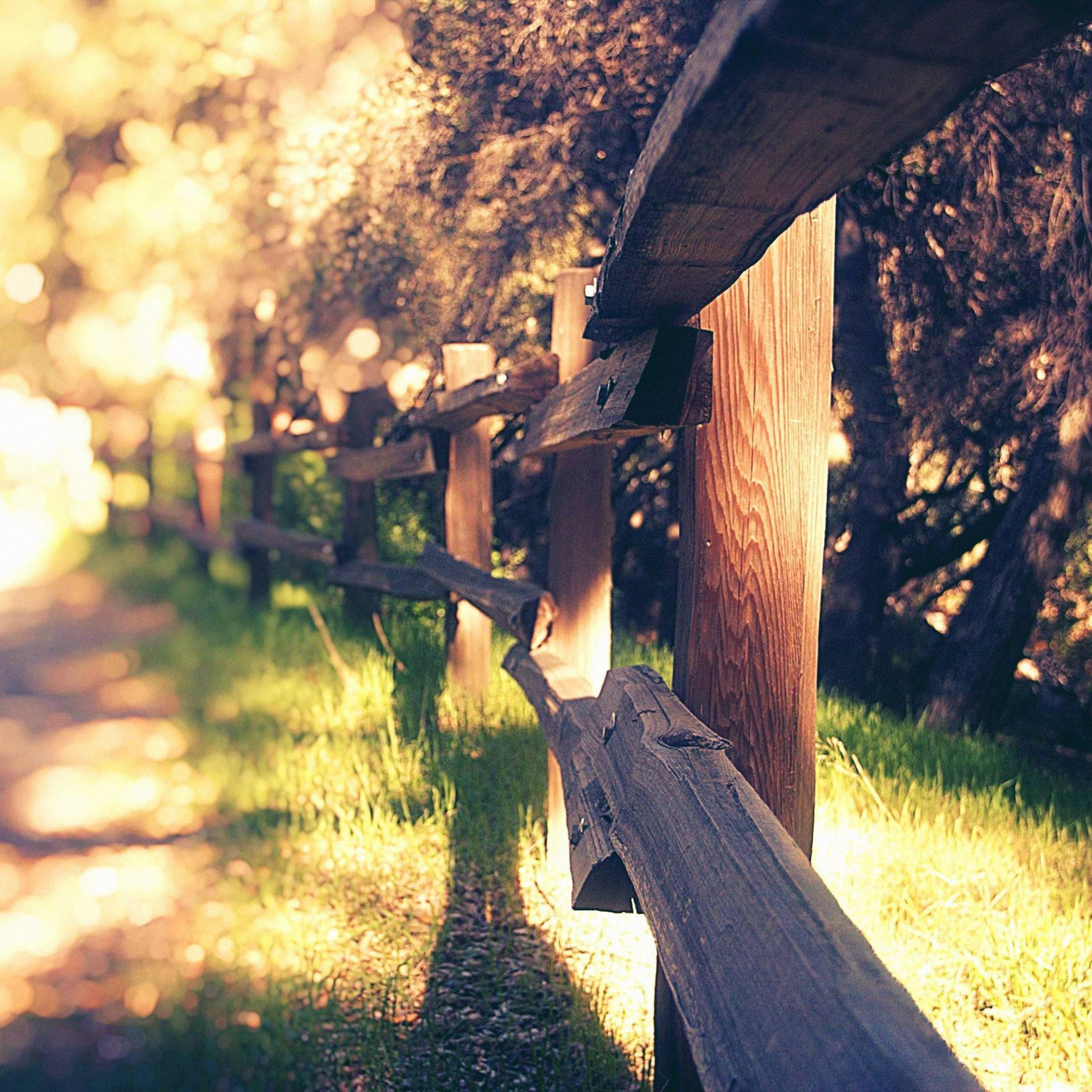 Mountain Fence  Sunny Day iPad Air wallpaper