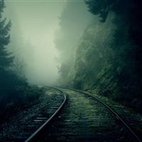 Foggy Train Tracks Forest iPad Air wallpaper