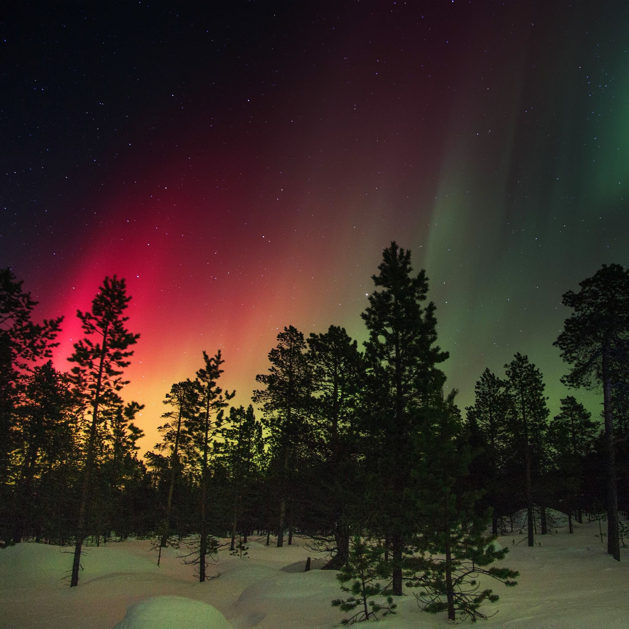 Snow Sky Aurora Night Winter Christmas iPad Air wallpaper