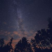 Night Sky Stars Milkyway Wood Nature Blue iPad Air wallpaper