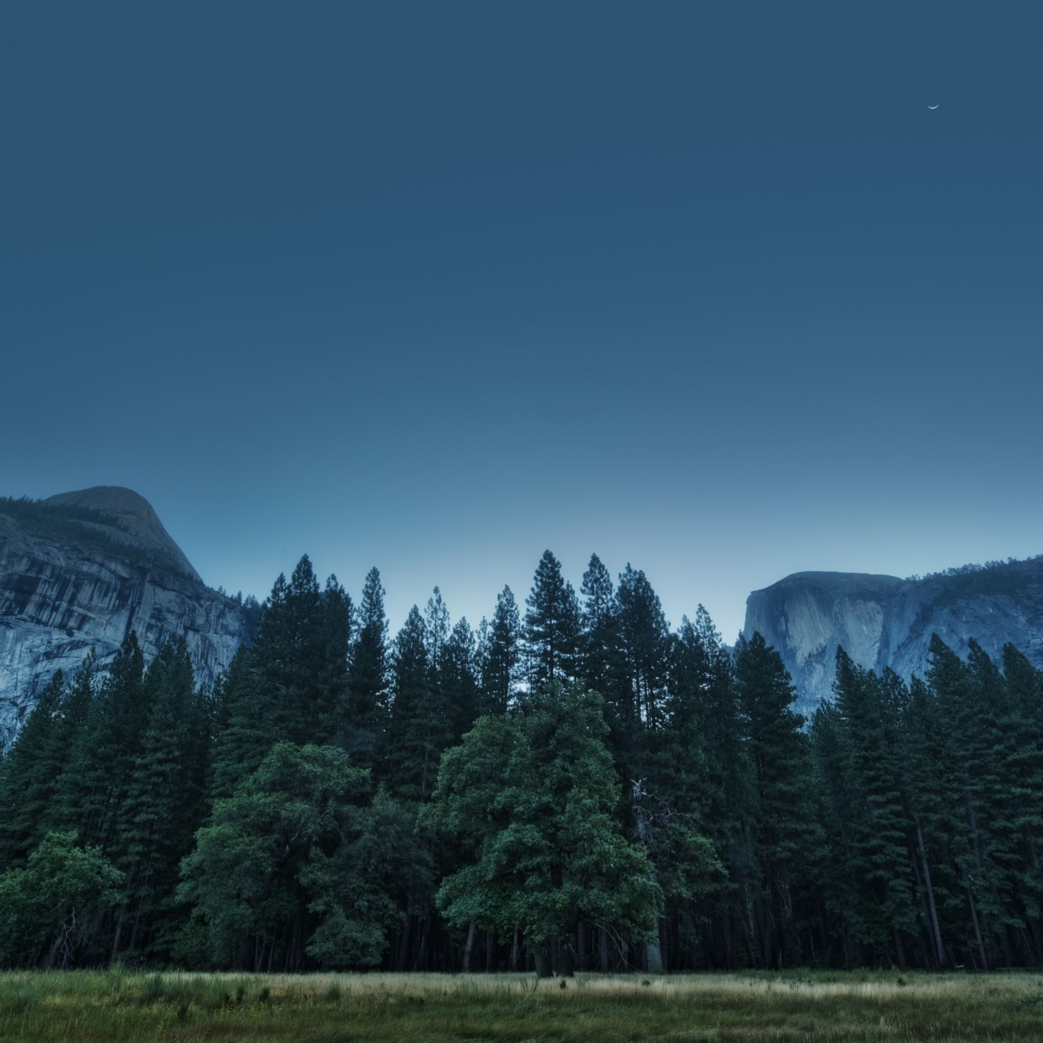 Trees Forest Mountains USA California Yosemite Valley National Park iPad Air wallpaper
