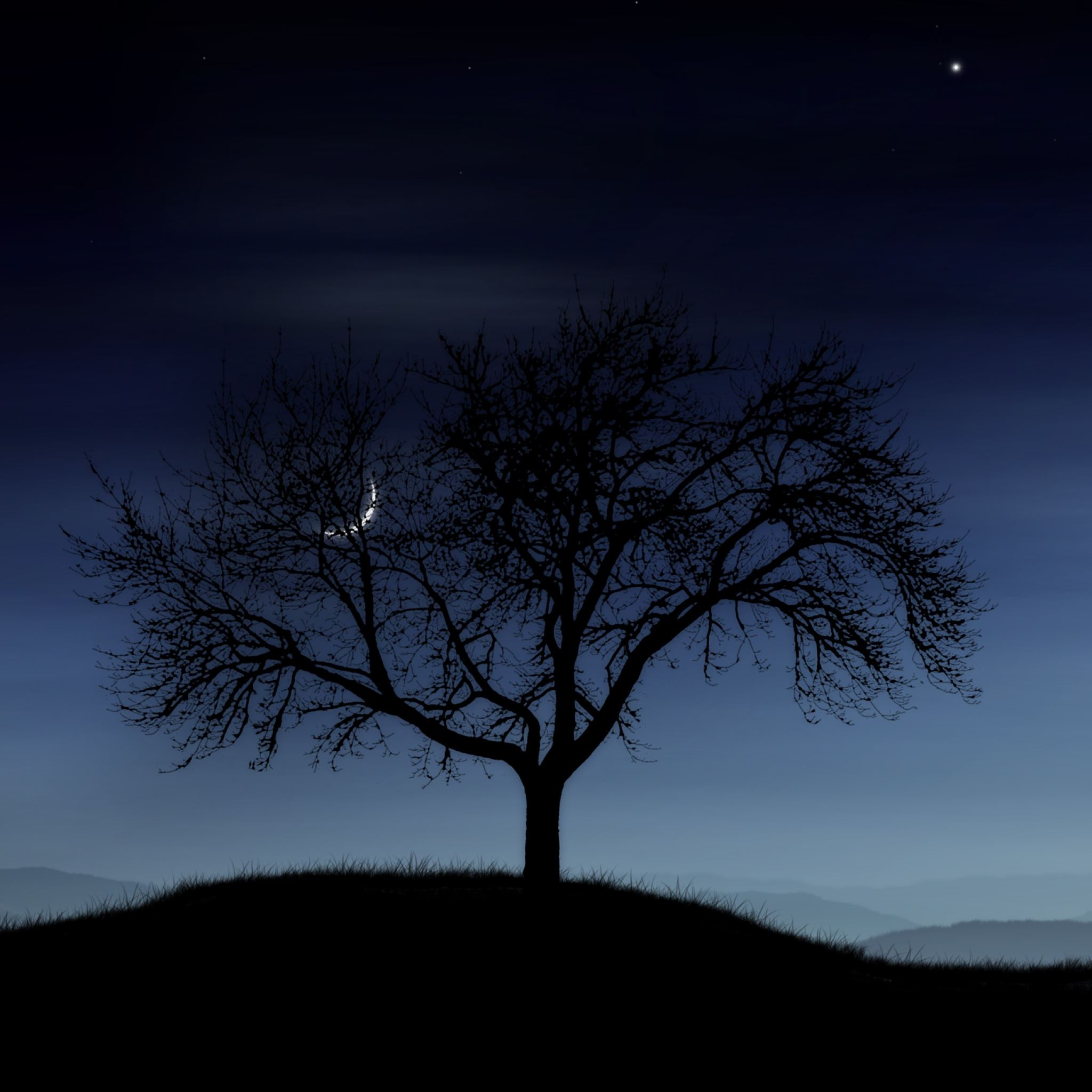 Tree night lonely silhouette stars moon fog iPad Air wallpaper
