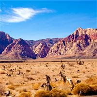 Red Rock in the Winter Sun iPad wallpaper