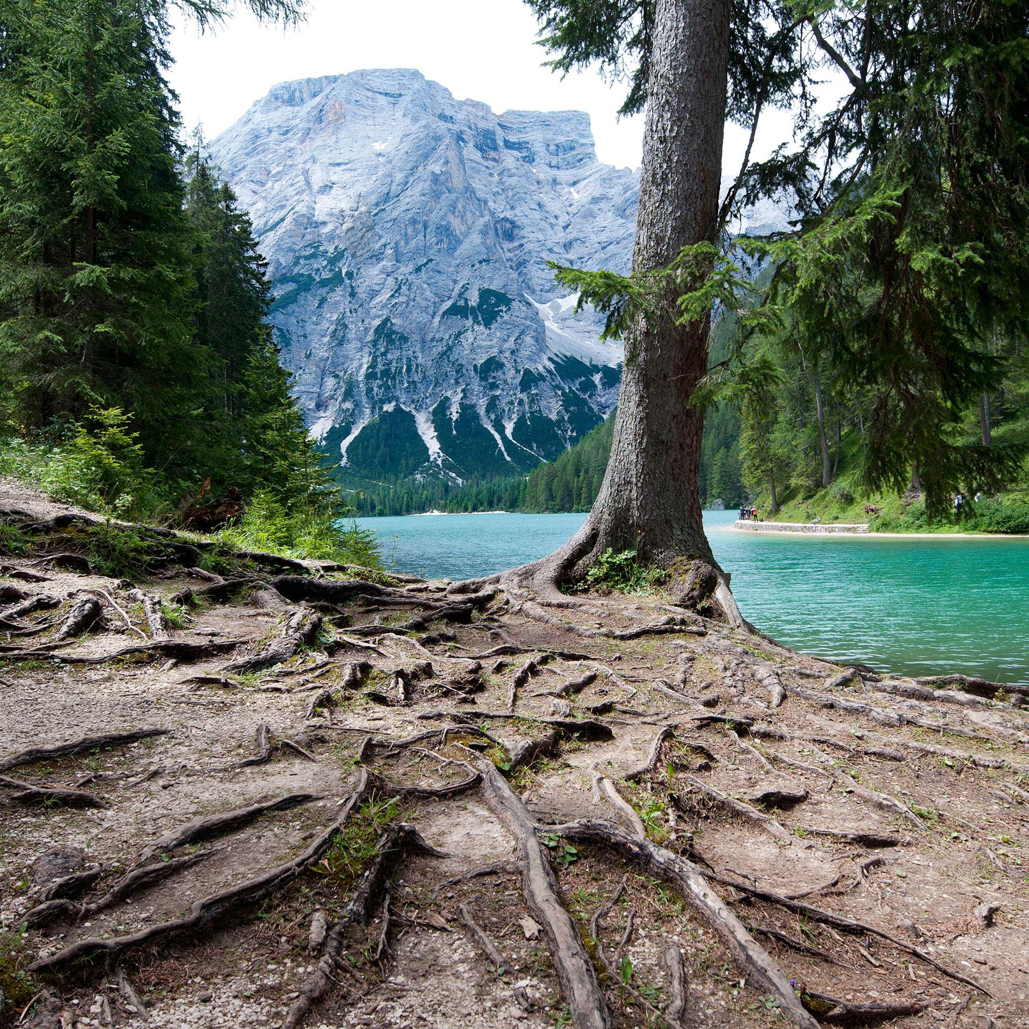R Wallpaper Download: Lago Di Braies IPad Air Wallpaper Download