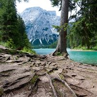 Lago di Braies iPad Air wallpaper