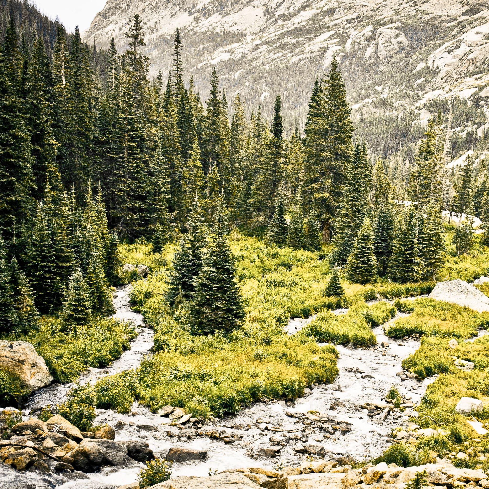 Rocky Mountain Overcast iPad Air