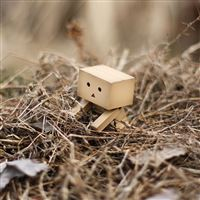 Cute Danbo iPad Air wallpaper