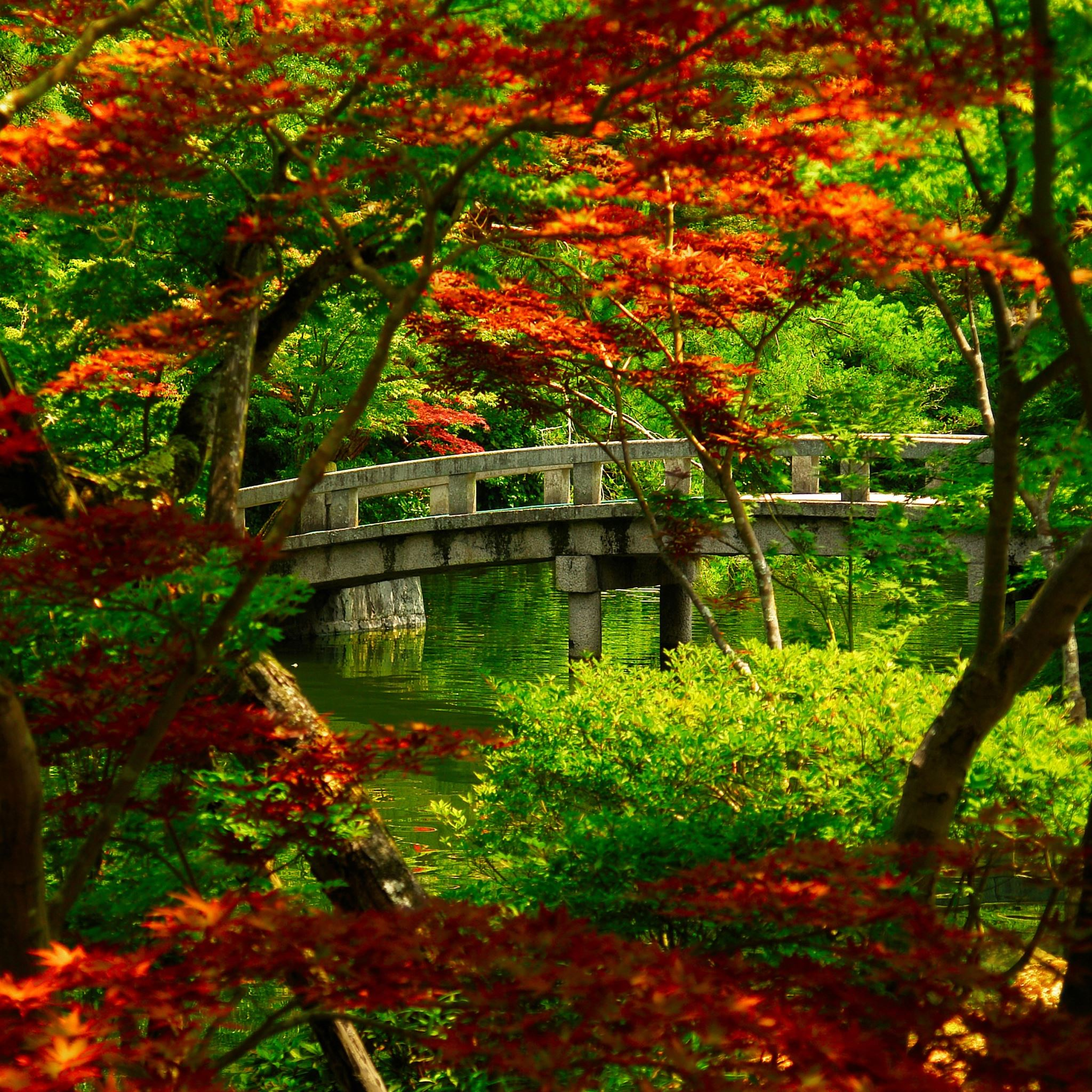 Japanese Garden Kyoto iPad Air wallpaper