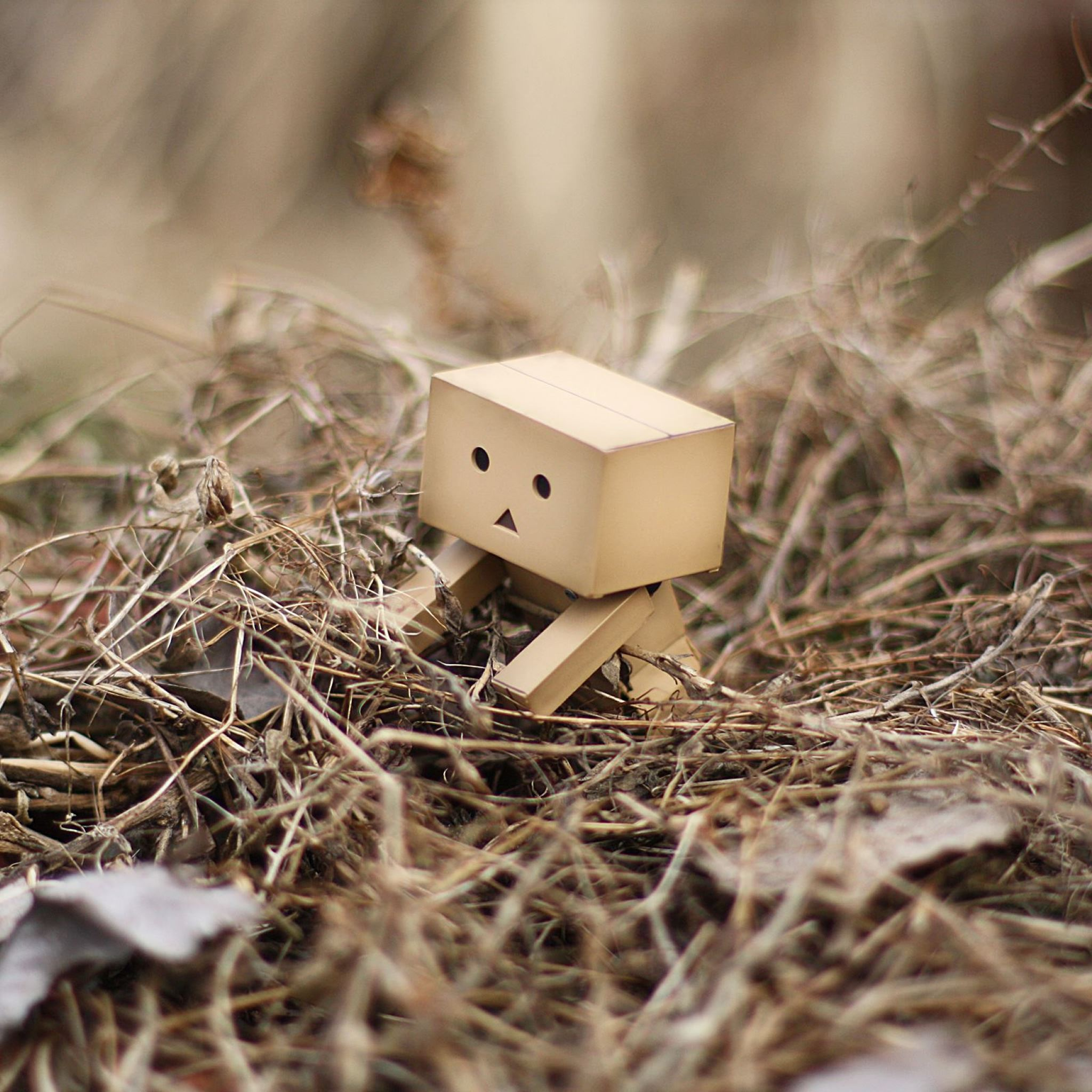 Danbo HD iPad Air wallpaper
