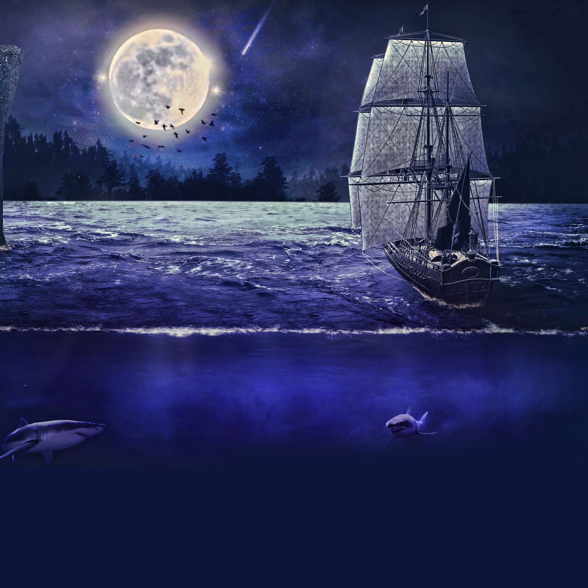 Moonlight sail iPad Air wallpaper