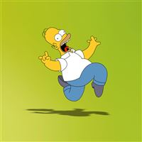 Homer Simpson iPad wallpaper
