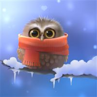 Cute Owl Graphic iPad wallpaper