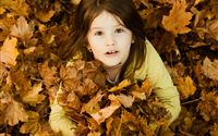 Cute Beautiful Girl In Autumn Leaves iPad wallpaper