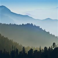 Foggy Mountains Forest Landscape iPad wallpaper