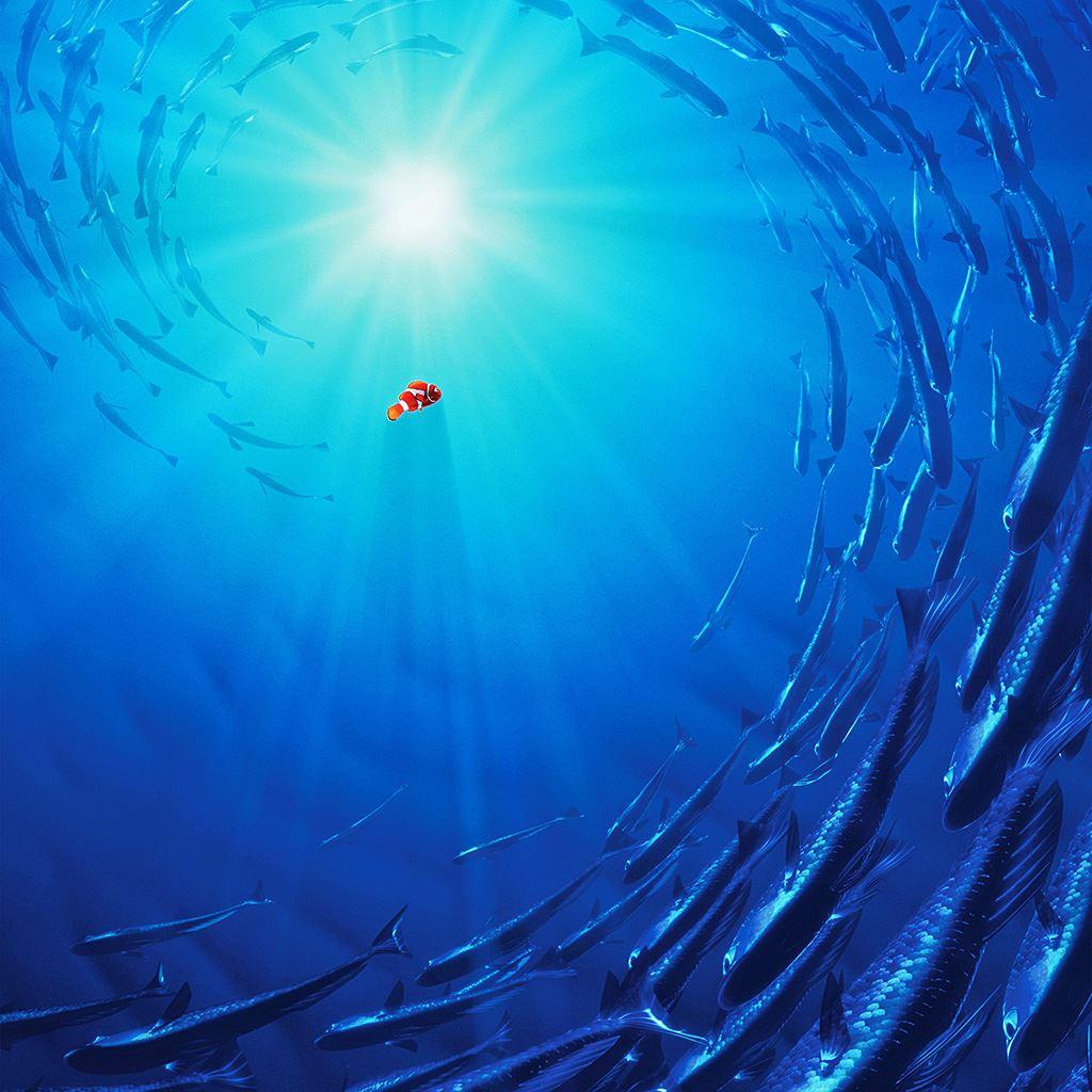 Nemo Disney Film Ipad Wallpapers Free Download