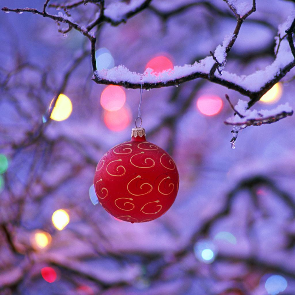 Red Christmas Ball Ipad Wallpapers Free Download