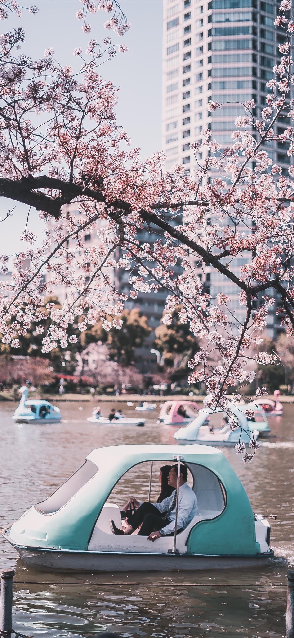 Ueno Park Tokyo Japan Iphone X Wallpapers Free Download