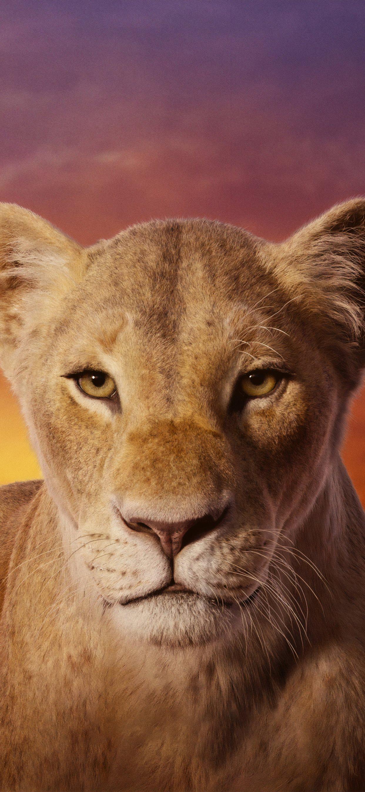 Beyonce As Nala The Lion King 2019 4k Iphone X Wallpapers Free Download