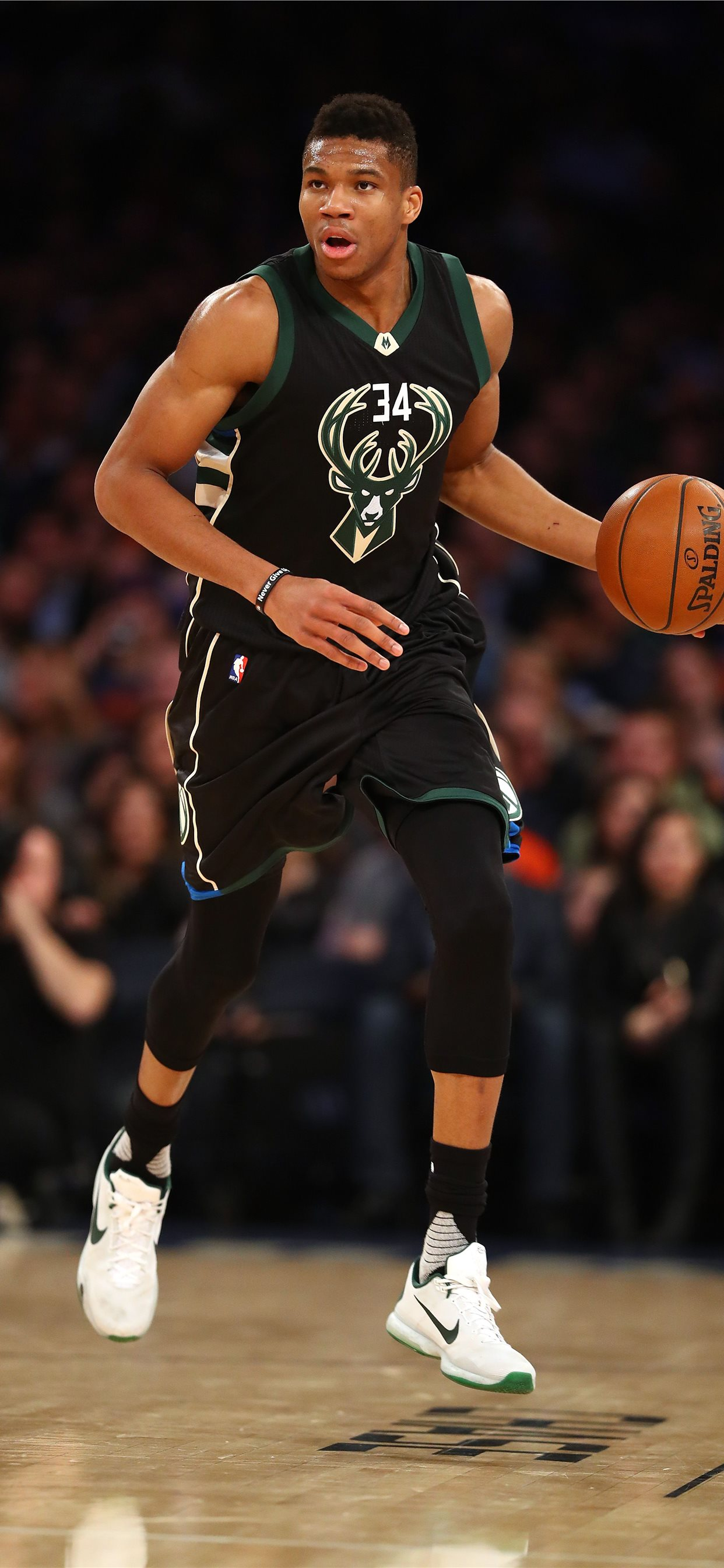 Giannis Antetokounmpo On Dog Iphone 11 Wallpapers Free Download