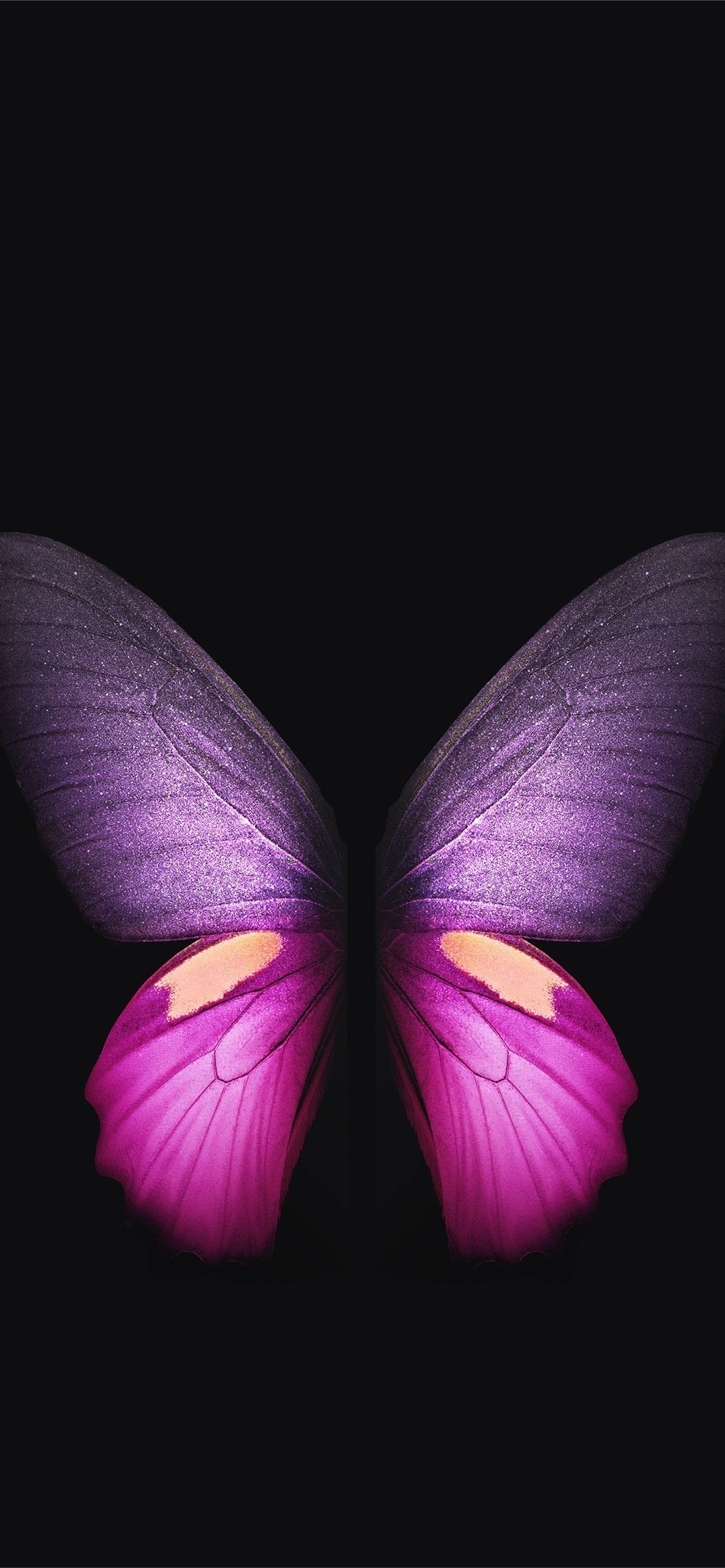Butterfly Wallpaper Iphone 11 Pro Max
