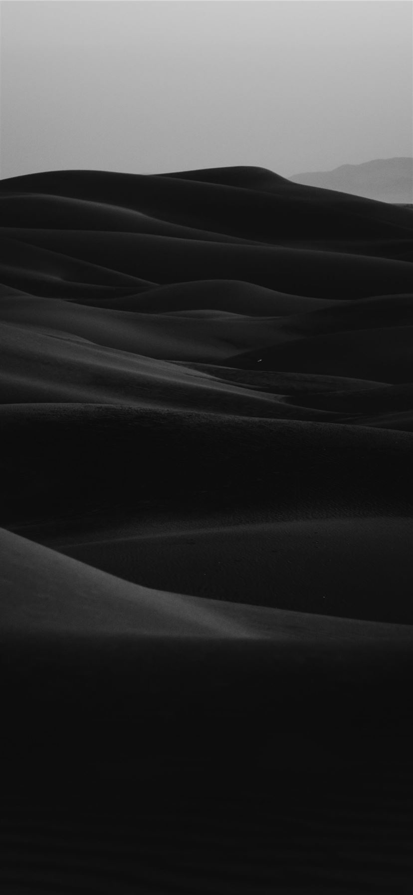 grayscale photo of desert iPhone 11 wallpaper