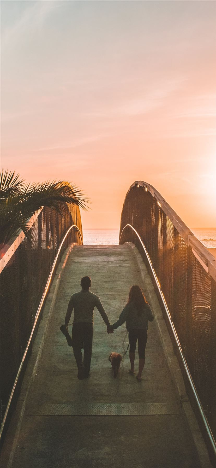 man and woman holding hand while walking on bridge iPhone 11 wallpaper