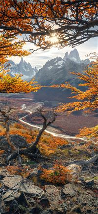 beautiful autumn colours in patagonia 4k iPhone 11 wallpaper