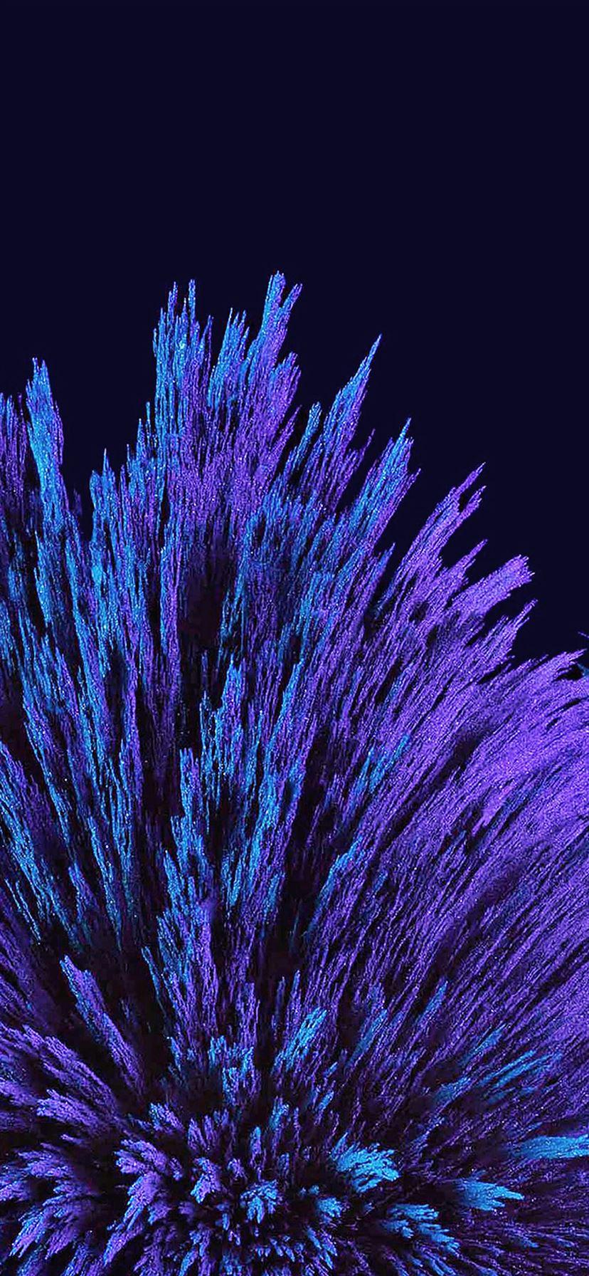 Dark Blue Flower Pattern Iphone 11 Wallpapers Free Download