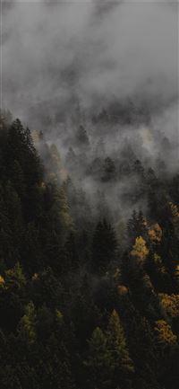 Best Fall Iphone 11 Wallpapers Hd Ilikewallpaper