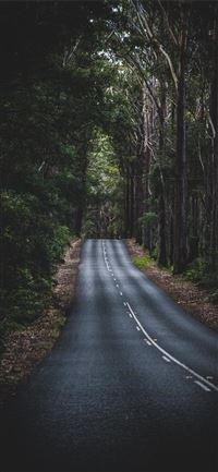 Long Mountain Road iPhone 11 wallpaper