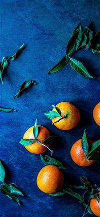 bunch of orange fruit iphone 11 wallpaper ilikewallpaper com 200