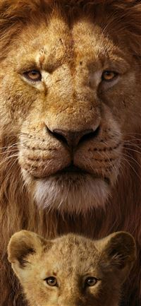 the lion king 8k iPhone 11 wallpaper
