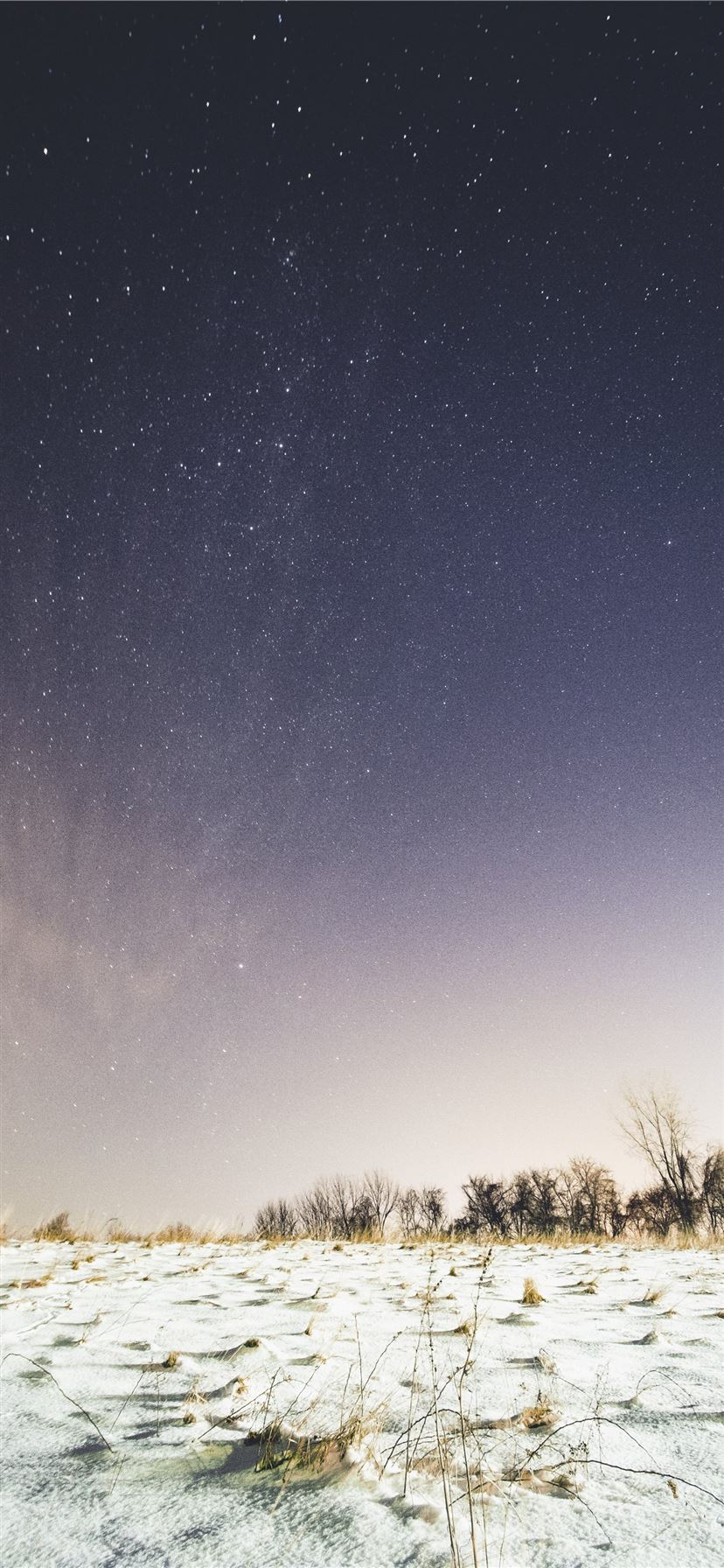 Snow Covered Ground Under Sky Full Of Stars Iphone 11 Wallpapers