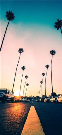 California iPhone 11 wallpaper