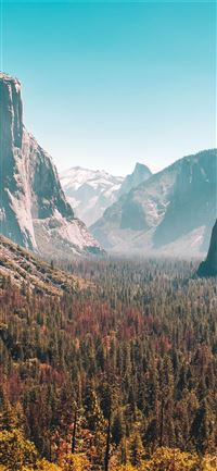 Forest Mountain Yosemite Valley 5k Sony Xperia X X... iPhone 11 wallpaper