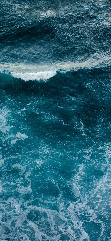WILD OCEAN (ДИКИЙ ОКЕАН) — ИГРОВОЙ АВТОМАТ, ИГРАТЬ В СЛОТ БЕСПЛАТНО, БЕЗ РЕГИСТРАЦИИ