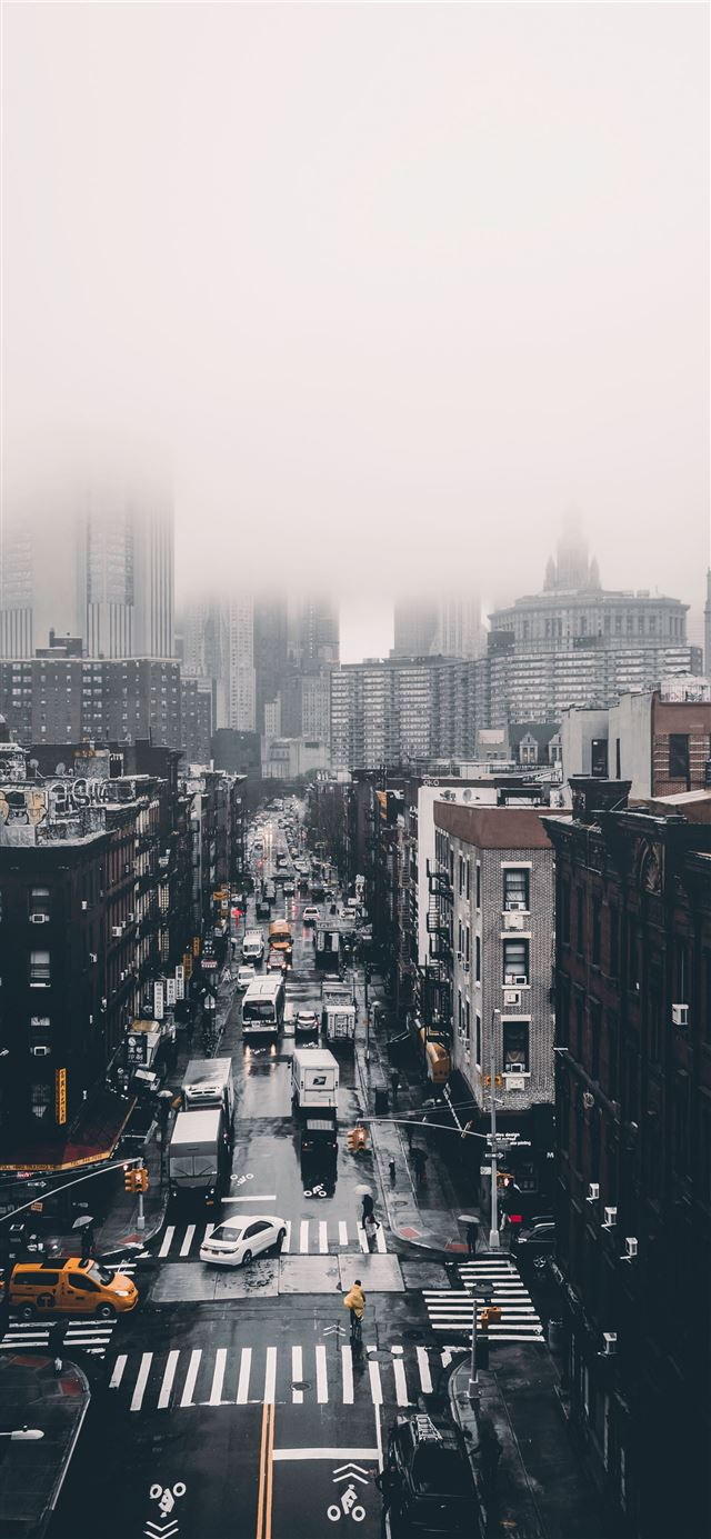 Foggy Day  iPhone 12 wallpaper
