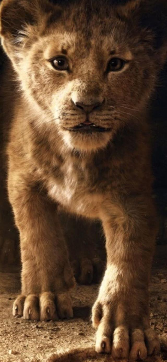 the lion king simba 2019 4k iPhone 12 wallpaper